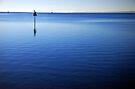 Peaceful Blues by Renee Hubbard Fine Art Photography