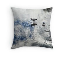 Cloud Reflections Throw Pillow