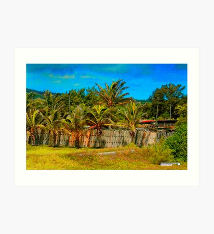 Coconut trees and fences Art Print