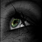 Broken Visions  by Elizabeth Burton