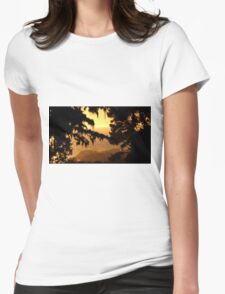 #221  Sunset Near Yankee Point Womens Fitted T-Shirt