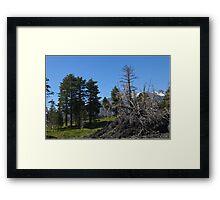 After Etna Framed Print