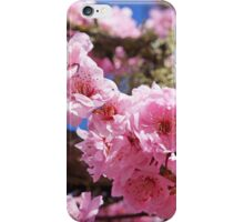 Spring Tree Blossoms Art Prints Gifts iPhone Case/Skin