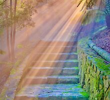 ...I saw before me a golden curtain and I climbed the stairs as if in a dream... by Geoffrey Dunn