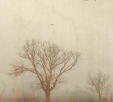 Fields of Moriac by John Conway