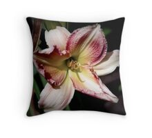 The Beauty of the Scenery Throw Pillow