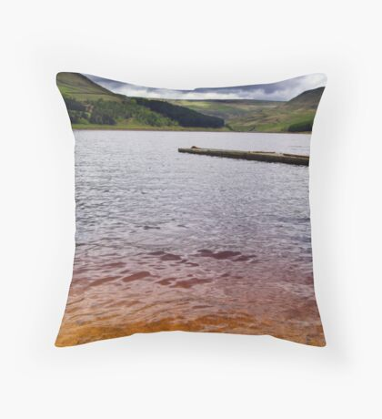 Peat in the Water Throw Pillow