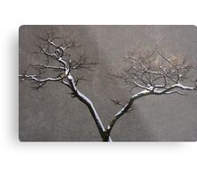Urban Nature Metal Print