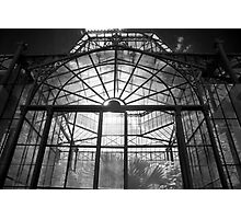 Glasshouse Photographic Print