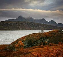 Ben Loyal by Martina Cross