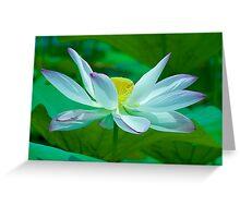 Lotus of Light Greeting Card