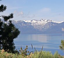 """Lake Tahoe and Sierra Nevada Mountains"" by Lynn Bawden"
