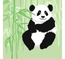 Green panda Photographic Print