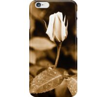 Sepia rose bud iPhone Case/Skin