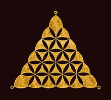 Flower Of Life, Sacred Geometry, Crop Circle, Triangle by nitty-gritty