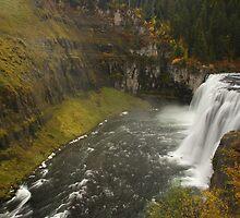 Mesa Falls by William C. Gladish