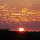 Kenyan Sunset by Abigail Rose