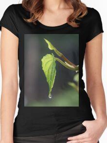 The Leaf & the Droplet Women's Fitted Scoop T-Shirt