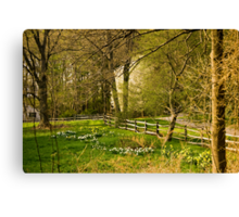 Springtime in New England Canvas Print