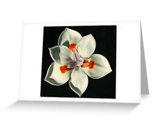 Six Petals Greeting Card