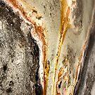 Black Opal Abstract by Gina Ruttle  (Whalegeek)