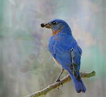 My Friend, Mr. Bluebird by Bonnie T.  Barry