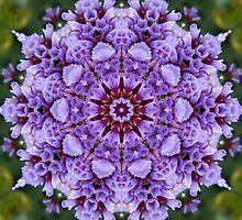 Wonderment mandala  by Marilyn Baldey