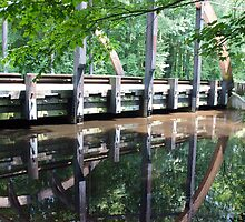 Bunch Of Walnuts Road Bridge. by meinvb