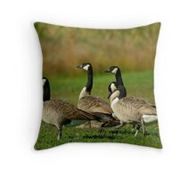 Canadian Geese Throw Pillow