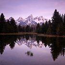 Dawn Light by Gina Ruttle  (Whalegeek)