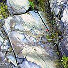 Quebec Rocks by Dana Roper