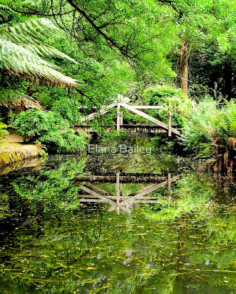 Reflection of a wooden bridge at Alfred Nicholas Gardens by Elana Bailey