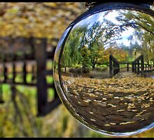 Through the crystal ball by threewisefrogs