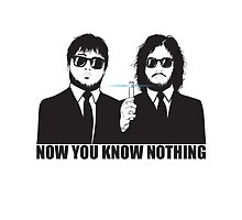 NOW YOU KNOW NOTHING by Beka Designs
