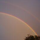 Rainbow lll by Sharon Stevens