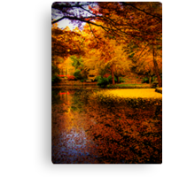 Leaves fill the lake in autumn at Alfred Nicholas Gardens Canvas Print
