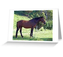 Now stand still.....very still Greeting Card