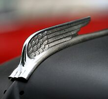 Classic Car Details and Hood Ornaments by JaimeWalsh