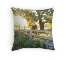 The Old Farm  Throw Pillow