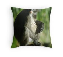 Dont Look, I havent done me hair! Throw Pillow