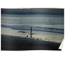 Beach Cricket Poster