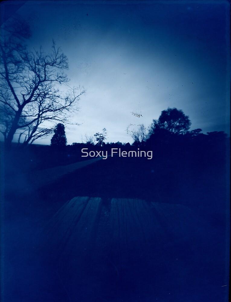 park by Soxy Fleming