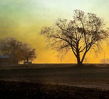 Daybreak on the Farm by Brian Gaynor