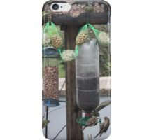 Allegory of sight iPhone Case/Skin