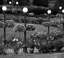 Garden With A Hint Of Lamp Post ~ Part Two by artisandelimage