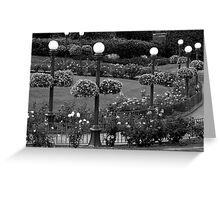 Garden With A Hint Of Lamp Post ~ Part Two Greeting Card
