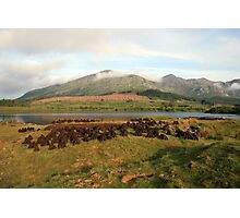 Turf cutting in Lough Inagh valley Photographic Print