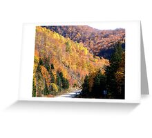 Autumn Splendor-Cabot Trail Greeting Card