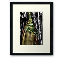 Wardrobe Framed Print