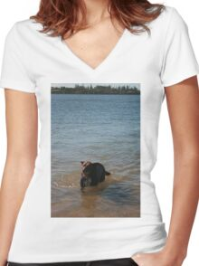 3 Nick's Rescue Dog Rosie a Kelpie-Border Collie Women's Fitted V-Neck T-Shirt